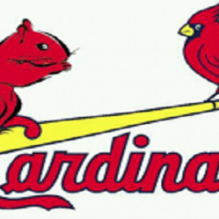 Cardinals, & Squirrels & Torty's…Oh My