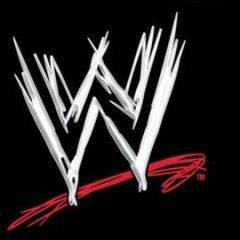 WWE Superstars At Busch Stadium